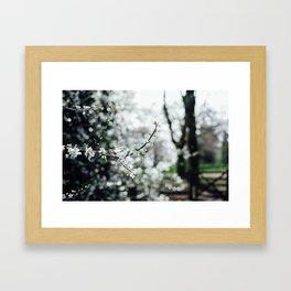 Holland Park #4 Framed Art Print