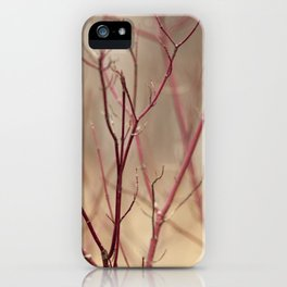 Canadian Prairies 13 iPhone Case