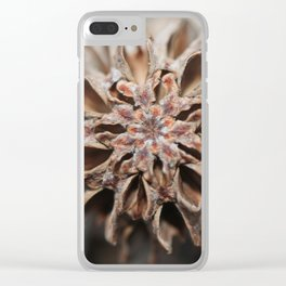 Vision Quest Clear iPhone Case