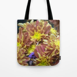 Longwood Gardens Autumn Series 288 Tote Bag