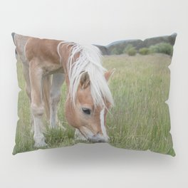 Blonde Beauty Pillow Sham
