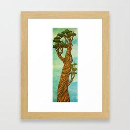 Candy Tree Framed Art Print