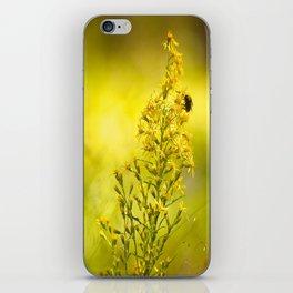 Golden Moment  iPhone Skin