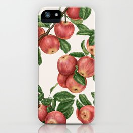 Rosy red apples  iPhone Case