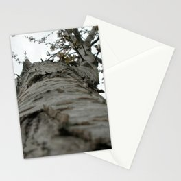 Tree [d]tales Stationery Cards