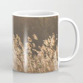 Sunlight Nature Captured Coffee Mug