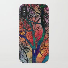 Dreamy Sunset iPhone Case