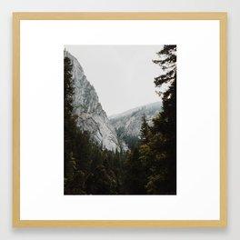Granite and Pine of the Eastern Sierra Framed Art Print