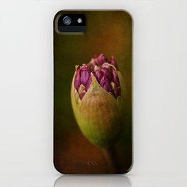 Allium in May iPhone Case