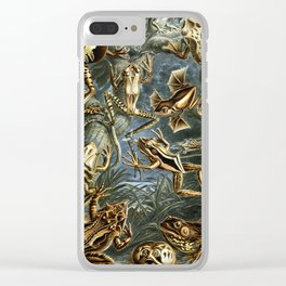 Ernst Haeckel - Artforms in Nature - Frogs Clear iPhone Case