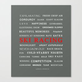 Ski Racing Grey Canvas Print