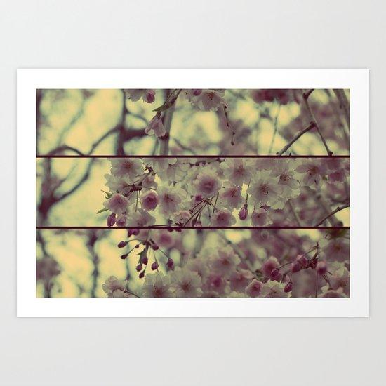 Blossomed Tree Art Print