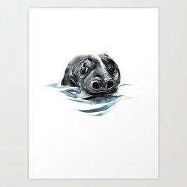 Seal Floating Art Print