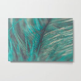 Turquoise Feather Close Up Metal Print