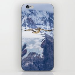 Austral Patagonian Bird Flying iPhone Skin
