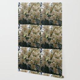 Longwood Gardens Orchid Extravaganza 66 Wallpaper