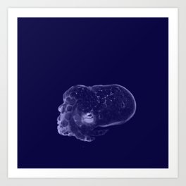 Galaxy Bobtail Squid Art Print