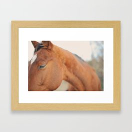 Gee4 Framed Art Print