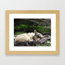 Let Sleeping Wolf Sleep Framed Art Print