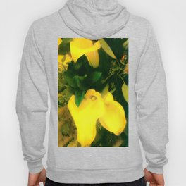 A TOUCH OF  CLASS Hoody