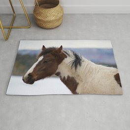 Tri-Colored Horse Rug