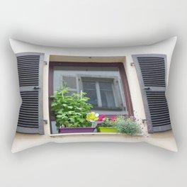 A window within a window Rectangular Pillow