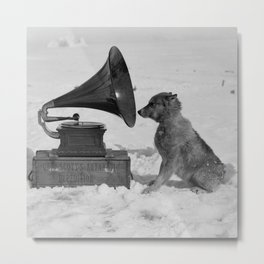 Chris the Dog and the Gramophone, Anarctic snow-covered polar black and white photography / photographs by Herbert Ponting Metal Print