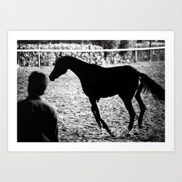 Horses 24 Art Print