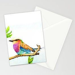 Lilac Roller Bird Stationery Cards