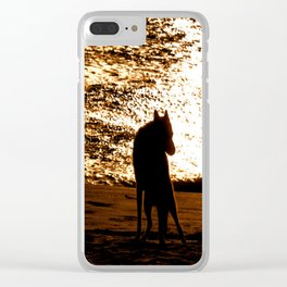 Guardian Of The Coast Clear iPhone Case