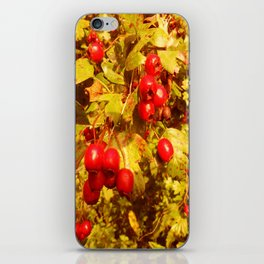 The Coming of Winter. iPhone Skin
