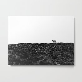 The Only One | Slieve League Metal Print