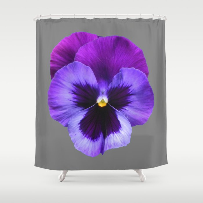 GREY MODERN ART SINGLE PURPLE PANSY Shower Curtain