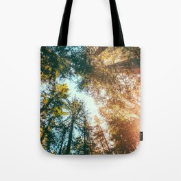 California Redwoods Sun-rays and Sky Tote Bag