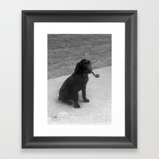 Pipe puffing dog. Framed Art Print