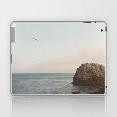 A Break From the Pack in Big Sur Laptop & iPad Skin