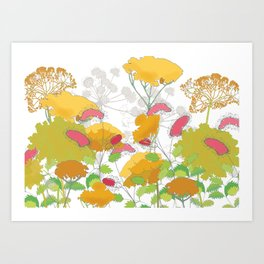 English flower print of Achillea and Sanguisorba by Emma Burnett Art Print