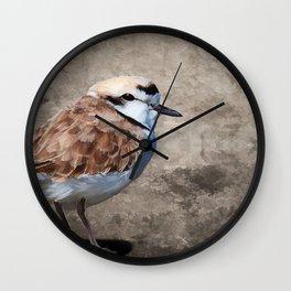 Western Snowy Plover Wall Clock