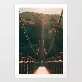 Taiwan bridge Art Print