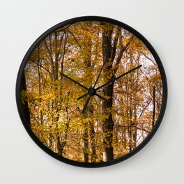North Georgia Fall Colors 2 Wall Clock