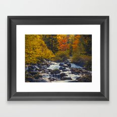 Autumn River II Framed Art Print