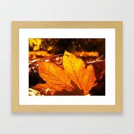 Dancing autumn flames Framed Art Print