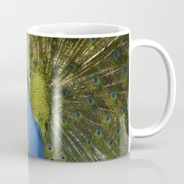 Peacock. Coffee Mug