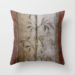 Antique wall painting Throw Pillow