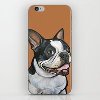 snoopy iPhone & iPod Skins featuring Snoopy the Boston Terrier by Pawblo Picasso