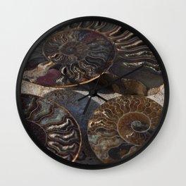 Ammonite Fossils Wall Clock