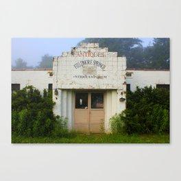 Fieldmore Springs Canvas Print