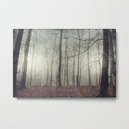 mood scape - mist woodlands Metal Print
