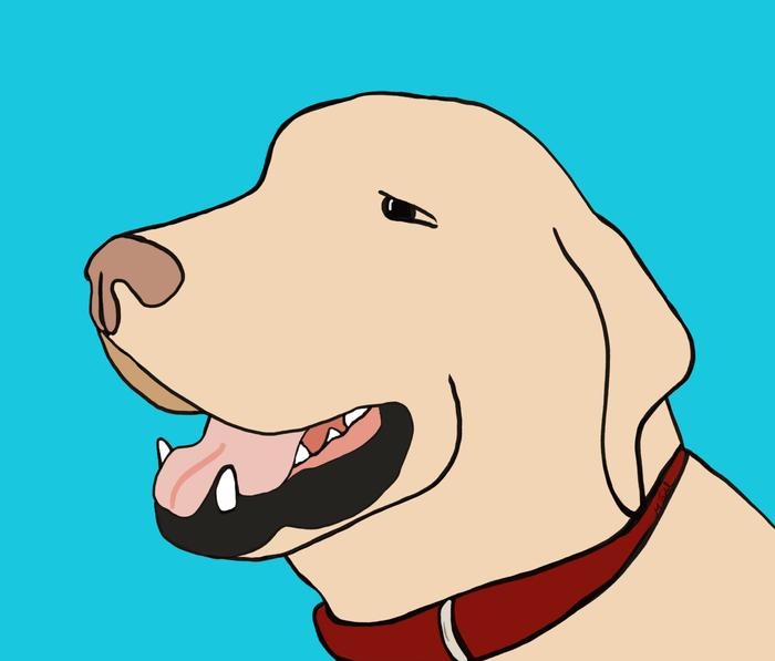 Sage A Yellow Labrador Metal Travel Mug