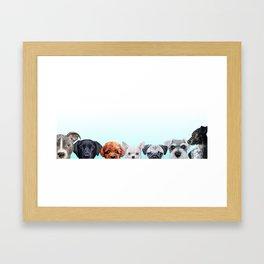 Dog all star 1 Framed Art Print